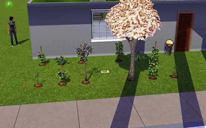 Fertilizing Plants in the Sims 3 can boost their growth rate and the quality of produce they create