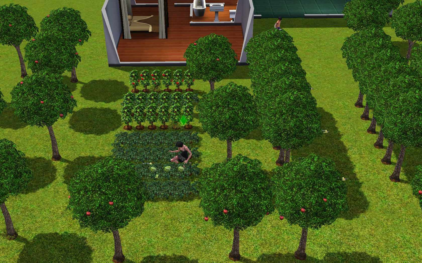 The Sims 3 Gardening Classes Planting Watering you Garden