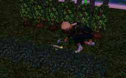 Upgrading sprinklers with auto-water allows your Sim to have a larger garden in the Sims 3