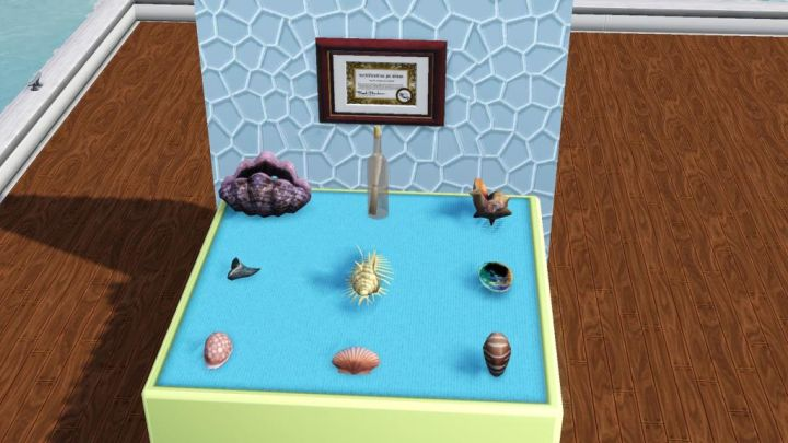 Sea Shells that can be found in The Sims 3 Island Paradise Expansion Pack