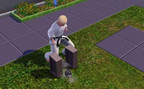 Breaking Blocks in the Sims 3 World Adventures with Sim Fu