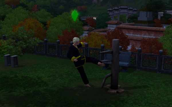Using a Training Dummy to raise the Martial Arts skill in the Sims 3 World Adventures
