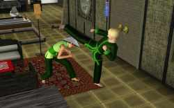 Martial Arts in the Sims 3