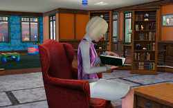 Reading the books at their local library is a good way for Sims to improve the cooking skill at higher levels.