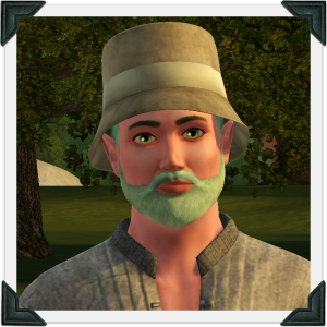The Sims 3 Dragon Valley World: Grey Household